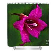 Hong Kong Orchid Shower Curtain