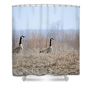 Honkers Shower Curtain