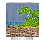 Honolulu Hi 7 Shower Curtain