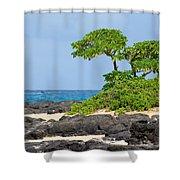 Honolulu Hi 8 Shower Curtain