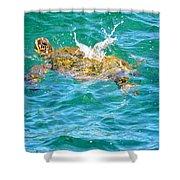 Honu Hawaiian Green Sea Turtle Shower Curtain