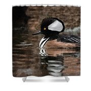 Hooded Merganser 2 Shower Curtain