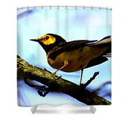 Hooded Warbler - Img 9290-002 Shower Curtain