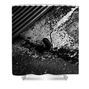 Hoover Dam Tunnel Shower Curtain
