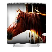 Hope In The Barn Shower Curtain