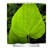 Hope With Strong  Life Believers  Shower Curtain