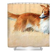 Hopper's Cape Cod Evening -- The Dog Shower Curtain