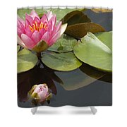 Horizontal Lily And Bud Shower Curtain