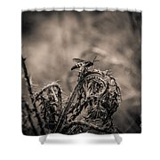 Hornet And Thorn - B Shower Curtain