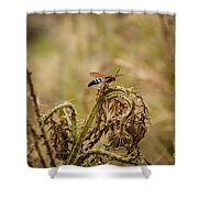 Hornet And Thorn Shower Curtain