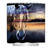 Horse 6 Shower Curtain by Mark Ashkenazi