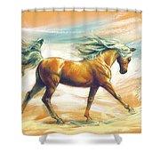 Horse Akalteke Shower Curtain