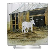 Horse And Barn Shower Curtain