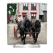 Horse And Buggy Sc3643-13 Shower Curtain