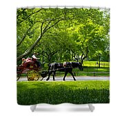 Horse And Carriage Central Park Shower Curtain