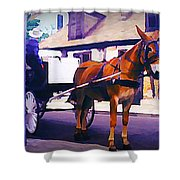 Horse And Carriage In Front Of Lafitte's Blacksmith Shop  Shower Curtain