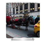 Horse And Carriage Nyc Shower Curtain