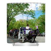 Horse And Carriages Central Park Shower Curtain