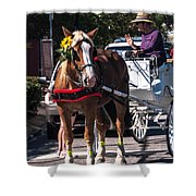 Horse And Cart Shower Curtain