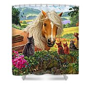 Horse And Cats Shower Curtain