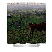 Horse And Farmhouse Shower Curtain