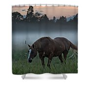 Horse And Fog Shower Curtain