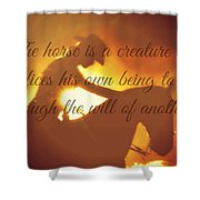 Horse And Rider Silhouette  Shower Curtain
