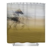 Horse And Sulkie Shower Curtain