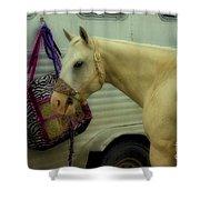 Horse Art 2 Shower Curtain