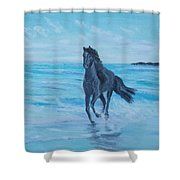Horse At The Sea Shower Curtain
