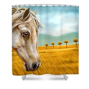 Horse At Yellow Paddy Field Shower Curtain