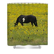 Horse  Birds  And Flowers   #8520 Shower Curtain