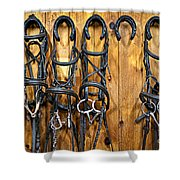 Horse Bridles Hanging In Stable Shower Curtain