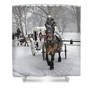 Horse Carriages In Snowy Park Shower Curtain