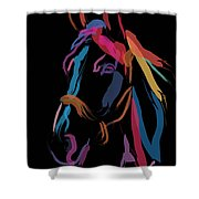 Horse-colour Me Beautiful Shower Curtain