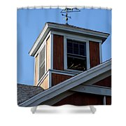 Horse Cupola Shower Curtain