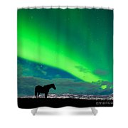Horse Distant Snowy Peaks With Northern Lights Sky Shower Curtain