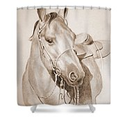 Horse Drawing Shower Curtain