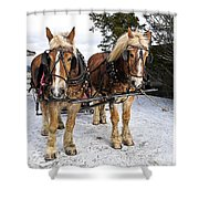 Horse Drawn Sleigh Shower Curtain by Edward Fielding