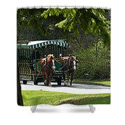 Horse Drawn Trolely Shower Curtain