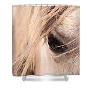 Horses Soul Shower Curtain