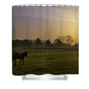 Horse Farm Sunrise Shower Curtain