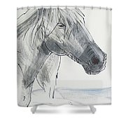 Horse Head Drawing Shower Curtain