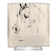 Horse Head Sketch Shower Curtain
