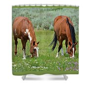 Horse Heaven Shower Curtain