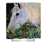 Horse Ign Shower Curtain