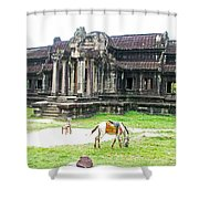 Horse In Front Of Outer Building In Angkor Wat In Angkin Angkor Wat Archeological Park-cambodia Shower Curtain