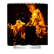 Horse In The Fire Shower Curtain