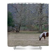 Horse In The Mist Shower Curtain