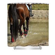 Horse In Water Shower Curtain